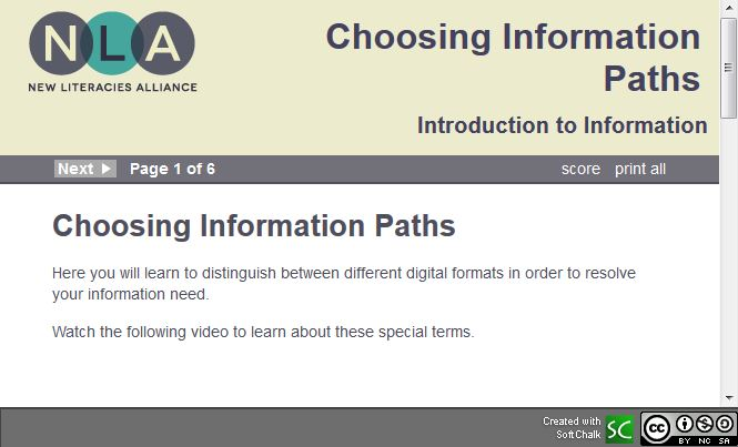 Choosing Information Paths