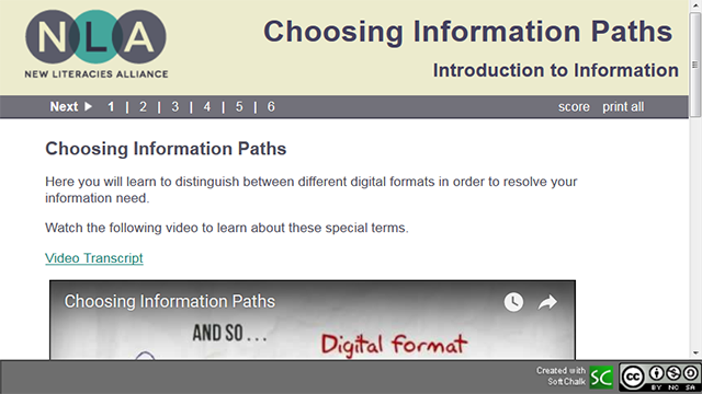 Choosing Information Paths