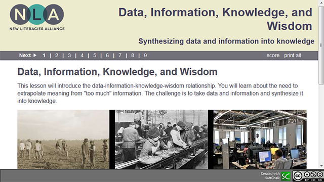 Data, information, knowledge, and wisdom